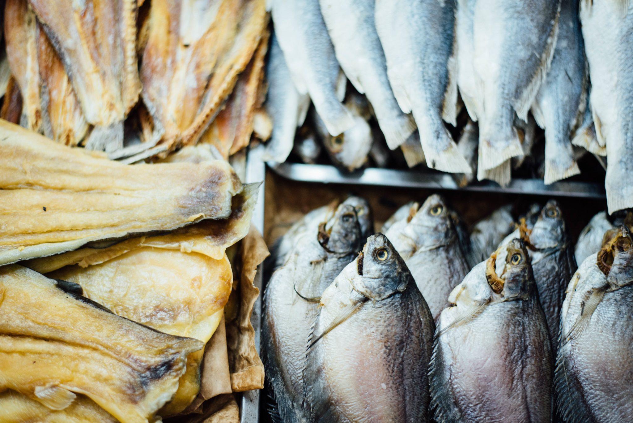fish oils asthma